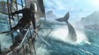 AC4 boats and whales